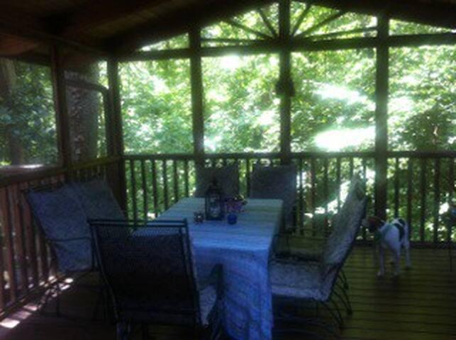 Woodland retreat Emory/Decatur