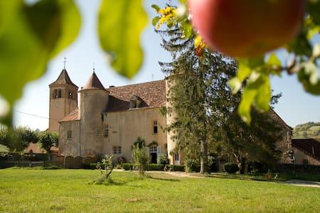 Gîte du château d'Oyé - La Clayette - ปราสาท
