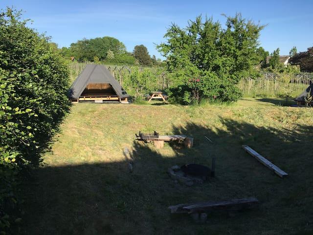 Vesterhavegaarden Vingård, Shelter nr 3