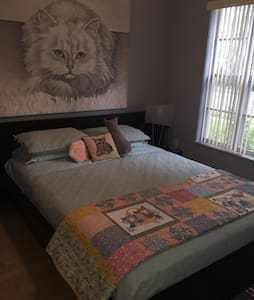 Unique Cat Themed Room for 2 - Orlando