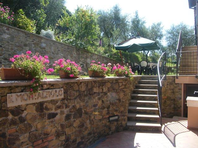 Appartamento Montagnolo verde - Lucca - Pis