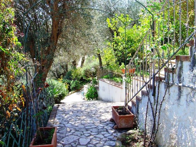 In Villa - 3 bed roomed - Reitano - Vila