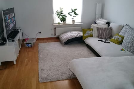 Nice n cozy townhouse 3km to Lund C - Lund