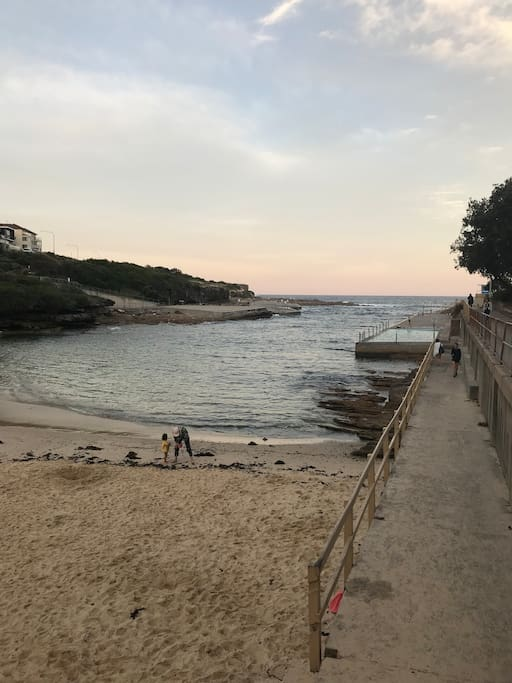 Clovelly Beach 5 min walk from the apartment and on the Bondi to Coogee Coastal Walk.
