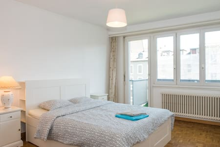 Large Apartment in the city Center - Genf
