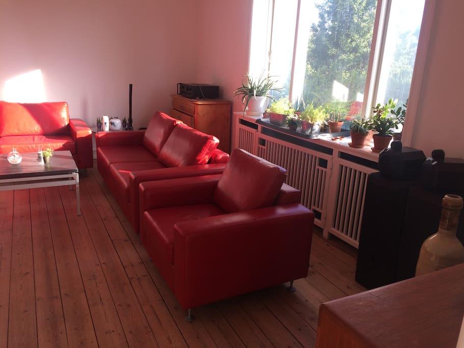 Stue, siddepladser til 8 personer. Evt. ekstra sovepladser.