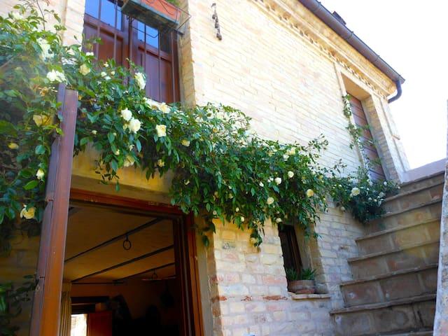 Il cielo in una stanza - un giardino sul mare - Città Sant'Angelo - Casa