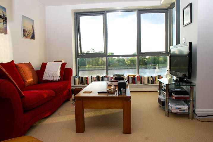 Waterside apartment situated by Blackrock Castle. - Cork - Apartmen