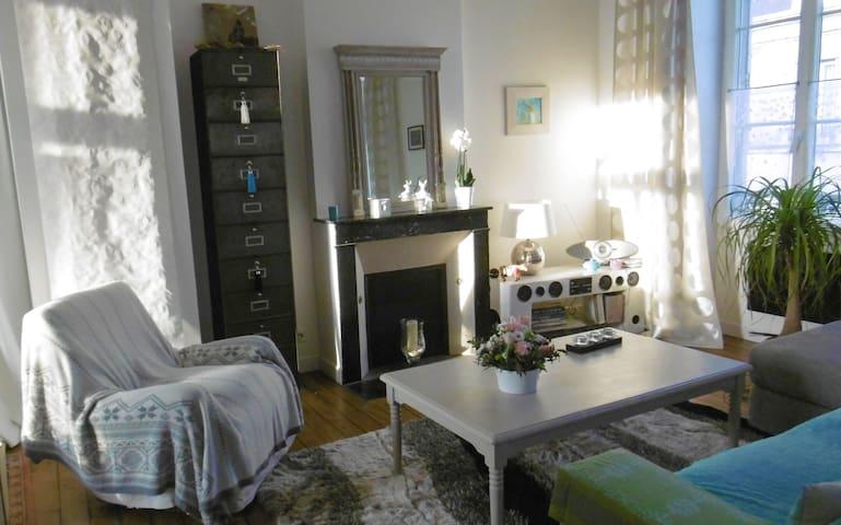 Appartement charme, Orléans 60m2 P'tit dej offert. - Orléans - Pis