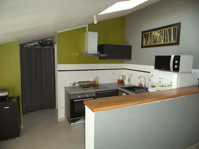 Appartement T1 bis charmant ancien gîte de France - Sainte-Soulle - Ortak mülk