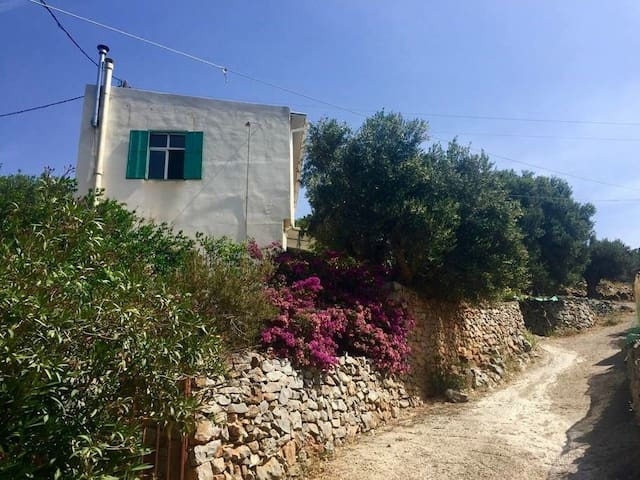 Cretan Holiday Villa Pines