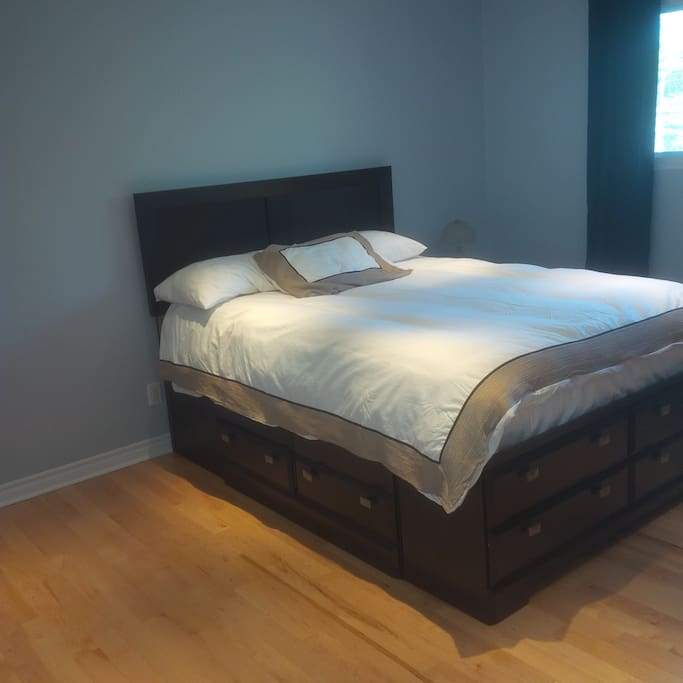 Master Bedroom, Level 1 (1)