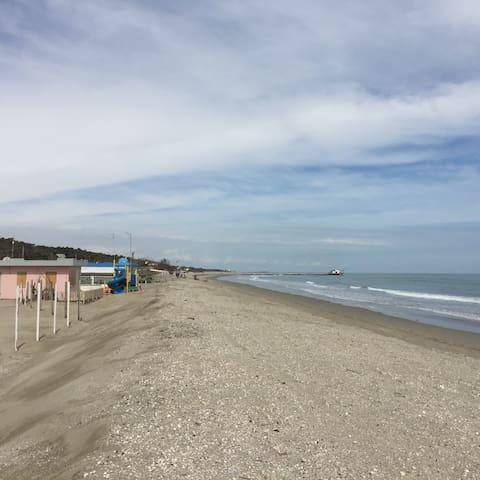 Marina Romea Attico  vicinissimo alla spiaggia