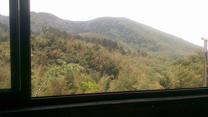 景觀森林小木屋