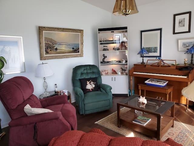 1- salon-living room