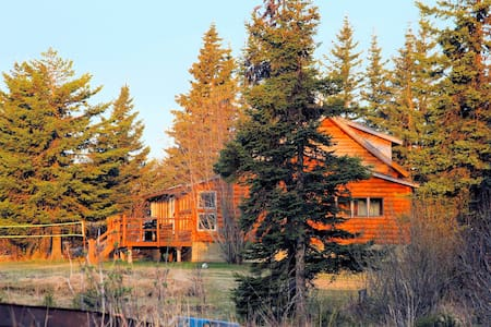 Alaska fun - Bear Den Vacation Home - House