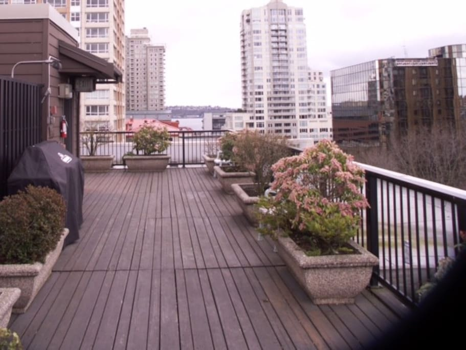 Rooftop deck with Grills available.