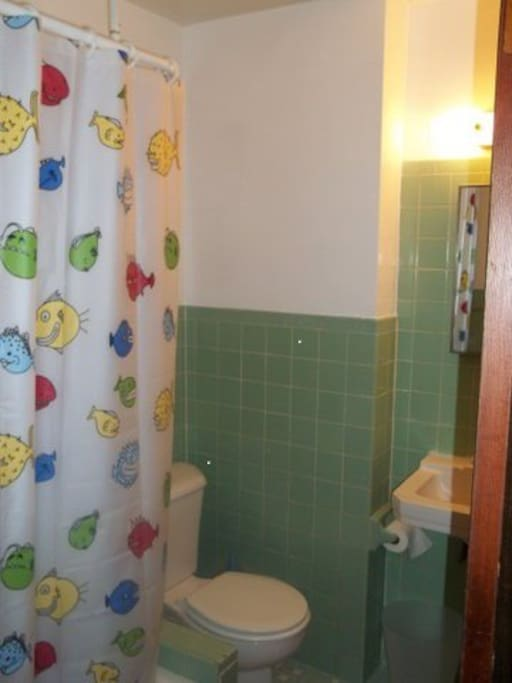 Whimsical But Functional: One of Three Bathrooms