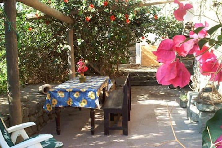 Dammuso Bouganville - Pantelleria