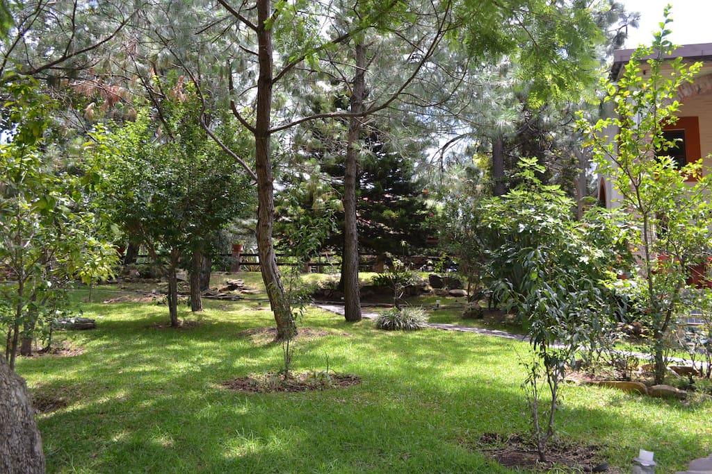 Large Gardens to enjoy nature