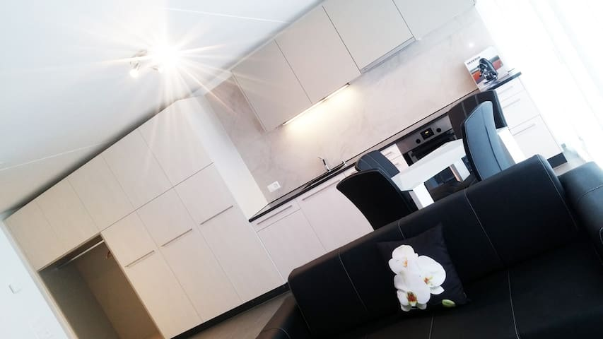 Luxurious and modern Business Apartment