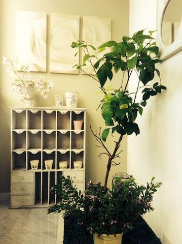 appartamento elegante ben servito - Cesena - Appartement