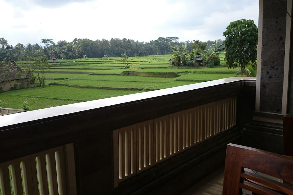 Terrace overlooking Eat Pray Love rice fields.