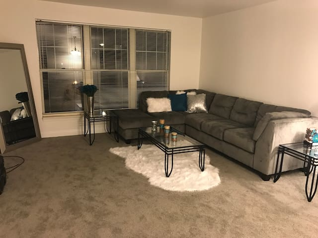 Spacious Apt walking distance from Downtown - Pittsburgh - Lägenhet