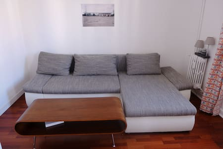 Private room in spacious flat, Nice