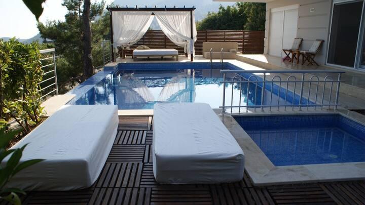 Luxury private family Villa Mira