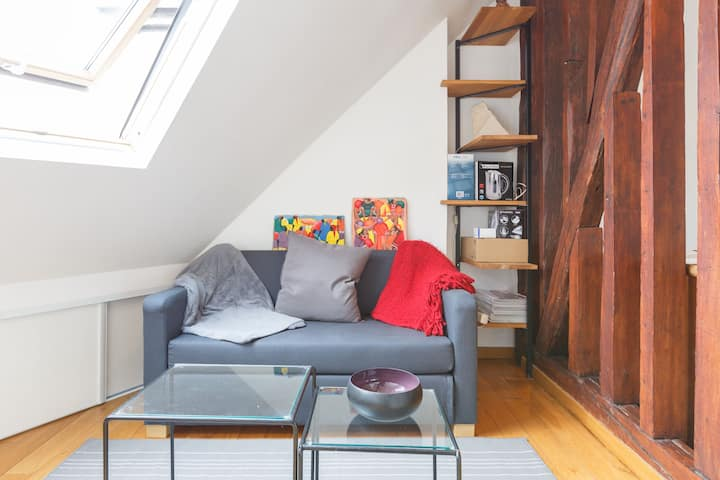 Charming flat on Montmartre roof