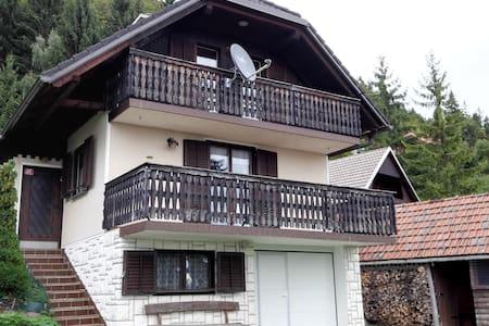 Chalet Jamnik - Ambrož pod Krvavcem - Dům