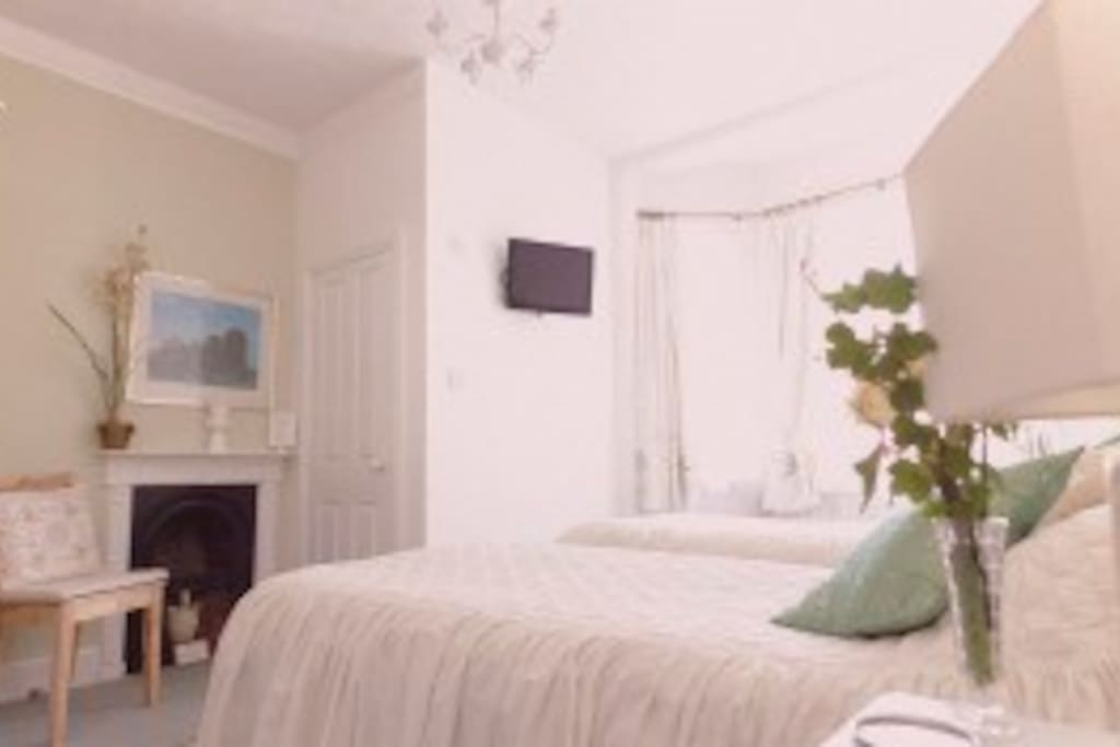 Lovely, spacious light twin-room en suite with large bay window