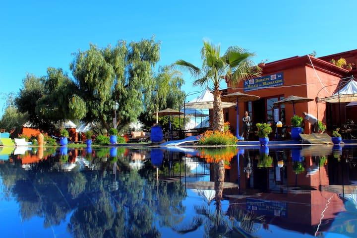 Tente Berbère piscine jacuzzi ...  - Marrakesch - Rundzelt