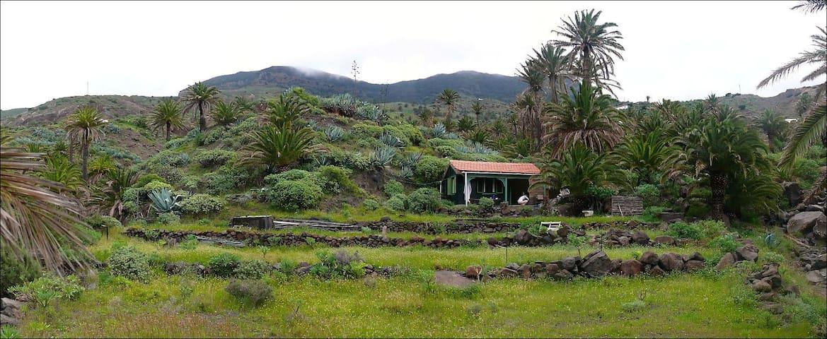 Cottage on private property in Tazo - Vallehermoso,La Gomera , Santa Cruz de Tenerife - Hytte