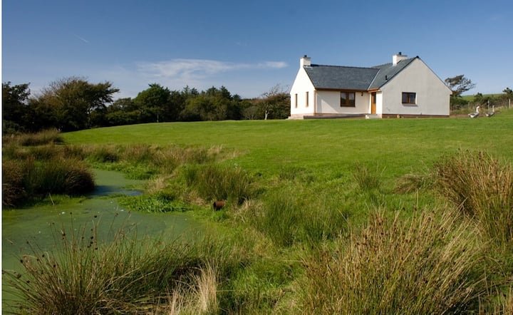 Laggansally Lodge - bungalow enveloped by farmland