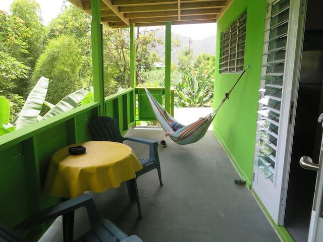 Rainforest Apartment