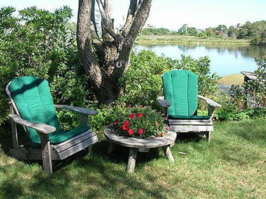 Relax by Mill Pond