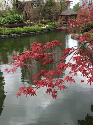 住一次就不想走的市中心私家花园。舒适无比地三居室。 - Guilin - Flat