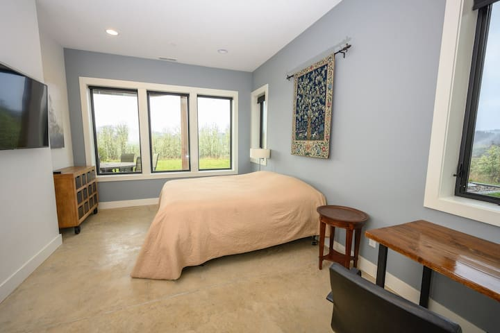 Master bedroom: Smart TV, memory foam queen mattress, dresser, desk,  adjoining bathroom with rain shower and adjoining walk-in closet (which adjoins the laundry room).
