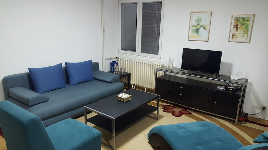 Great 1 bedroom apartment in the heart of the city