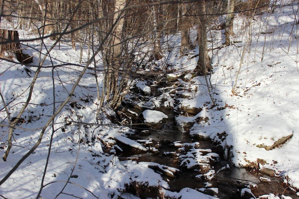 creek alongside property