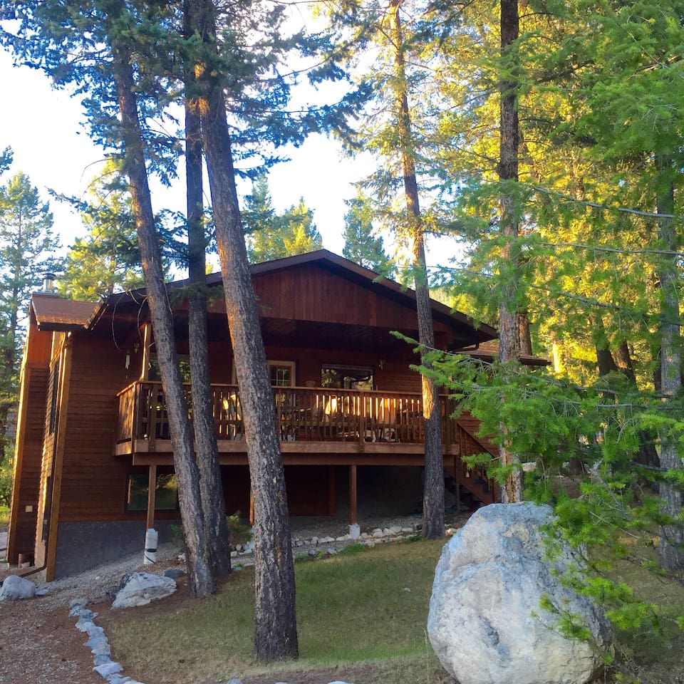 Summertime at the cabin-beautiful bright sunlight and cool shade provided by an abundance of trees.