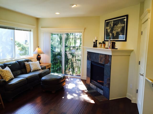Private Guest Bedroom in Lovely Queen Anne Home