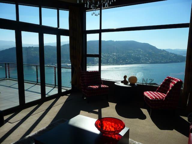 5 Star Views, Peace & Privacy, Breakfast and WiFi, - Dunedin - Bed & Breakfast