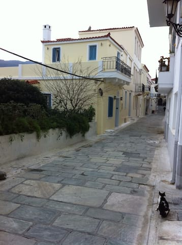 Traditional two floor house 75m2 - Andros - House