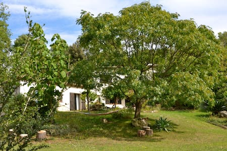 Le Recantounet - Roquefort-les-Pins - Bed & Breakfast