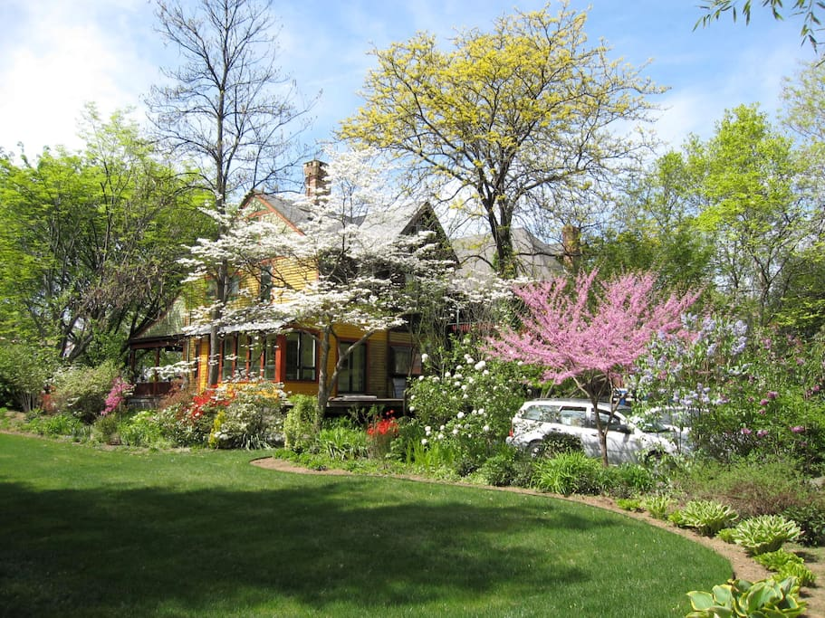 #102 Spring Setting Backyard