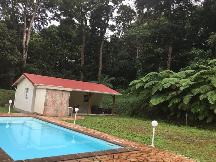 Beau T2 neuf en forêt tropicale avec piscine