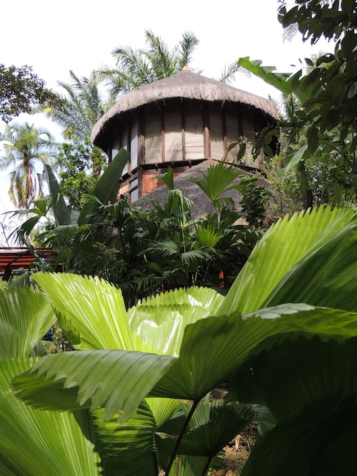 vie from the jungle 2nd and 3rd floor. each floor with it's own bed & bathroom
